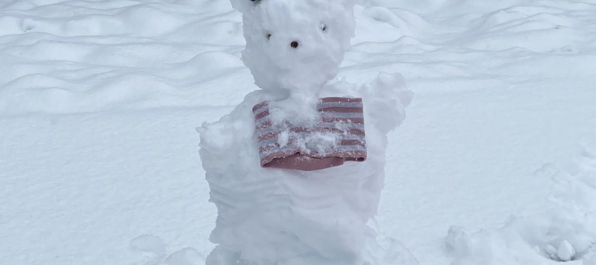 Der Schneeeisbär